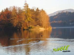 Mountainlake in autumn in evening light