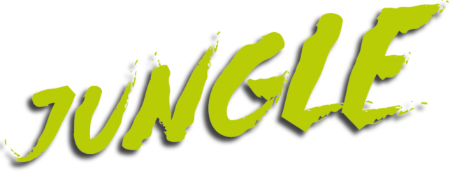 Jungle Productions - Film- und Service Production - Innsbruck - Tyrol